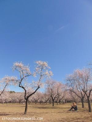 Céu azul! Ah, primavera, sentimos sua falta!
